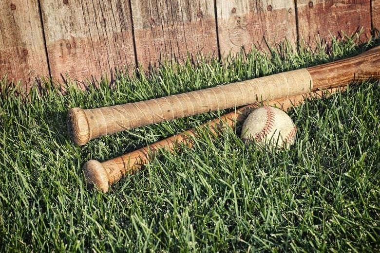 Baseball bat and fence practice