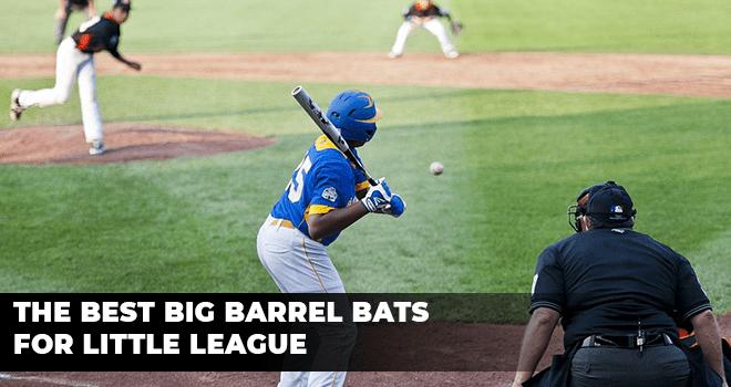 Best Big Barrel Bats for Little League