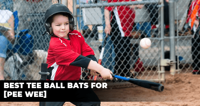 Best Tee Ball Bats For [Pee Wee]